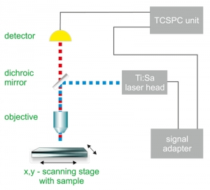 Generalized set-up of a fluorescence lifetime imaging microscope with TPE excitation