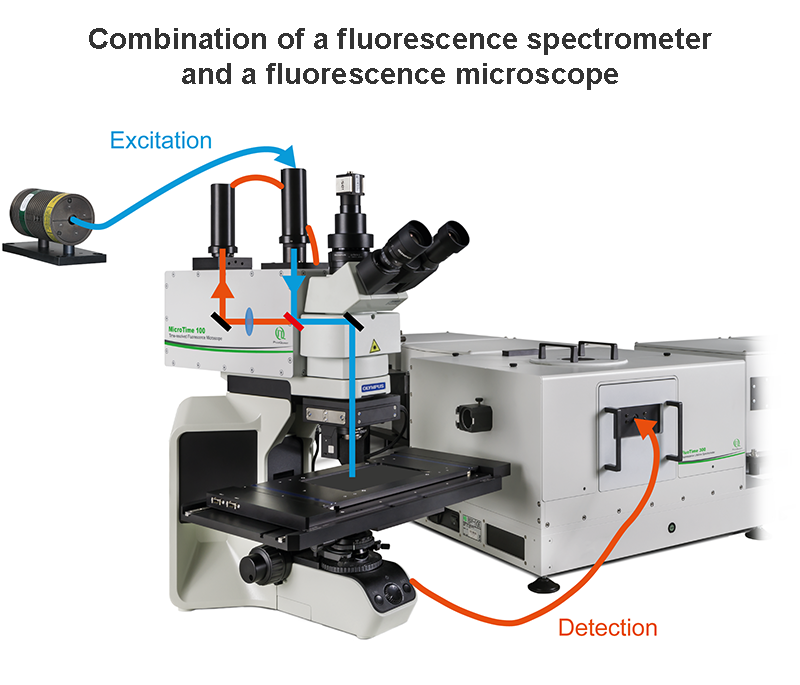 Coupling the time-resolved spectrometer with the scanning microscope. This combination allows scanning and recording data from any sample mounted on the microscope stage.