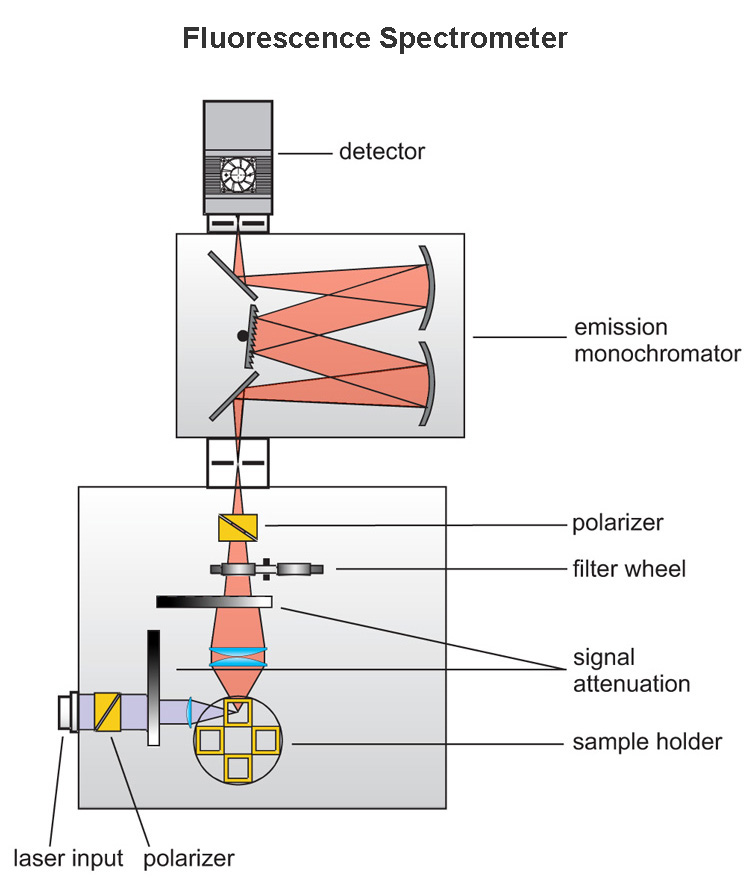 General layout of a fluorescence spectrometer