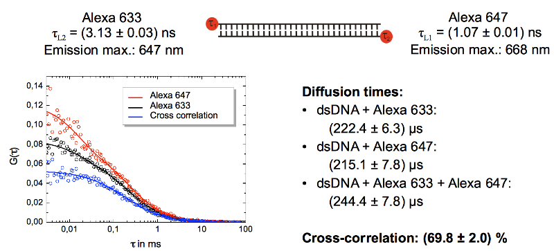Auto- and Cross- correlation curves of double stranded DNA  oligonucleotides labeled with Alexa 633 and Alexa 647