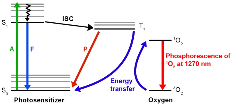 Jablonski diagram for singlet oxygen detection