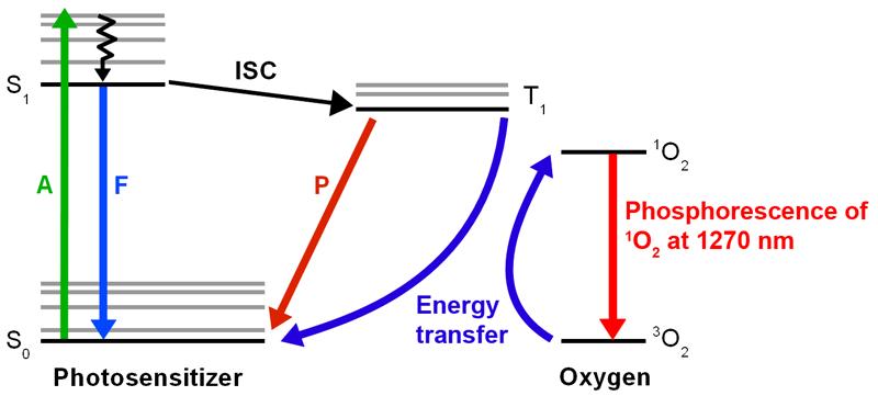 Jablonski diagram for singlet oxygen detection