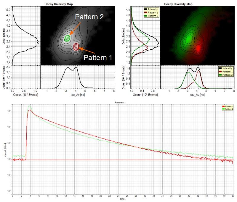 Analysis of FLIM image with pattern matching