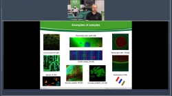 NEW TOPIC: Microscopy in materials science