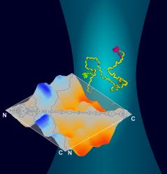 Invited webinar - Functional studies of dysfunctional proteins