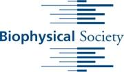 Biophysical Meeting 2020