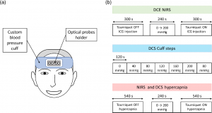 New potential techniques for neuromonitoring using PicoQuant instrumentation
