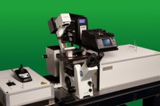 Combining the MicroTime 200 with the Bruker BioScope Catalyst AFM for Multiparameter Cell Imaging