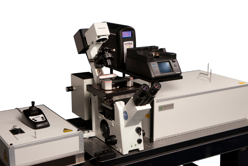 PicoQuant combines optical microscope with atomic force microscope