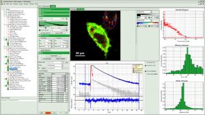 SymPhoTime64 - FLIM-FRET analysis