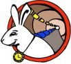 White Rabbit logo  | MultiHarp 150