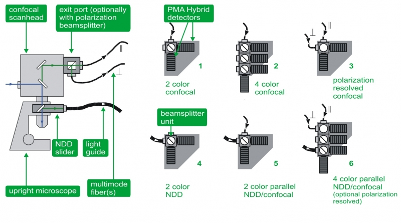 Schematic overview about possible detection options for an upright microscope